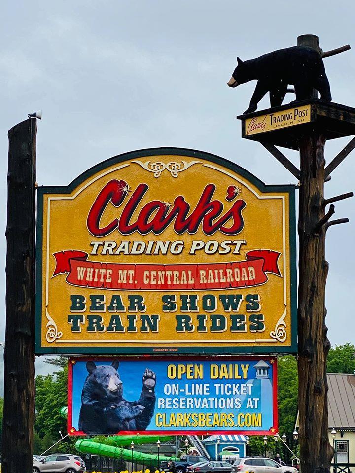 Clarks Bears